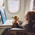 So Much News: Lufthansa Systems, Gogo, Inmarsat, Thales, SITA – and More!